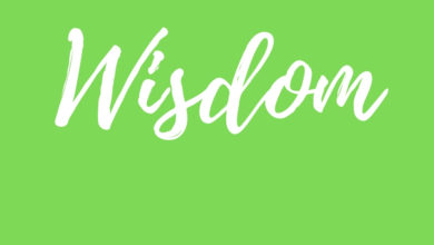 Photo of Introduction to Wisdom Series