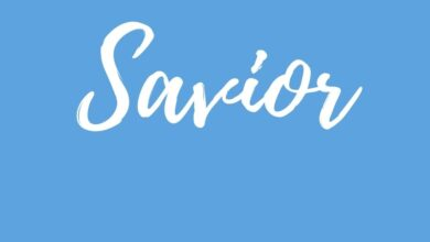 Photo of Introduction to Savior Series