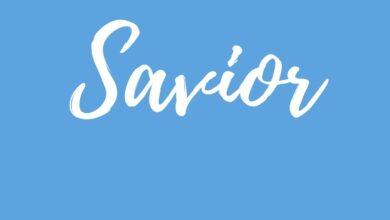 Introduction to Savior Series Amazing Kingdom