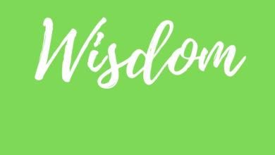 Wisdom Series Amazing Kingdom